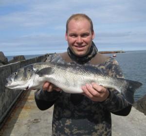 interid_26_DSF rekordfisk Havbars 3782 gr 71 cm
